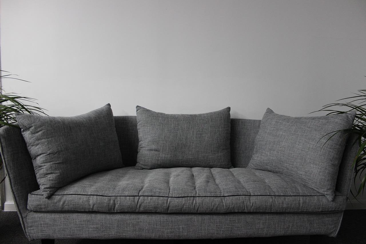Muebles y plagas, peligrosa combinación